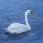 Swan, oil painting by Judith Lynn Smith