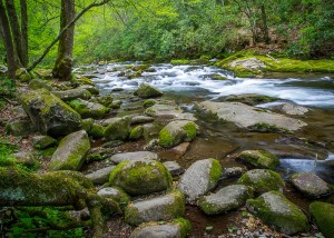 """""""Oconaluftee (By the River) was created on a beautiful Spring day on the banks of the Oconaluftee River in the Smoky Mountains!  When I look at this picture I remember the sound of the running water, the mist all around as the water from the spring melt and rains moved downstream!  I remember finding just the right spot to include the amazing tree root and boulders in the foreground!  It was such a peaceful moment, one I wanted to capture and share with you!"""""""