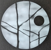Shadows #4, example of glass etching, by Todd Stokes