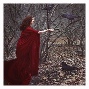 Taming the Crows by Denise Richardson
