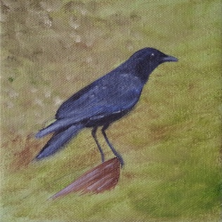 American Crow, oil painting by Judith Lynn Smith