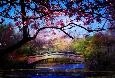 """Digital art: """"The Woods Enchanted"""" by Sheila K. Ter Meer"""